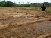 ayarpadi-farm_09_resize