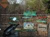 sadhana-forest_01_resize