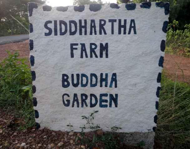 siddhartha-farm-1-_resize