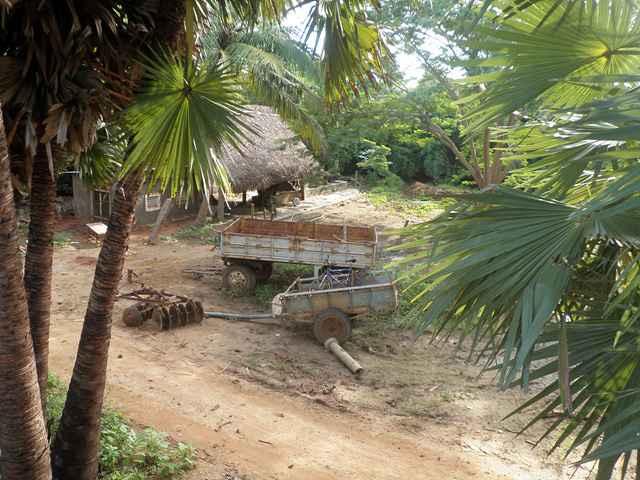 siddhartha-farm-5_resize