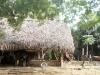 siddhartha-farm-9_resize