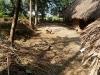 annapurna-farm_07_resize