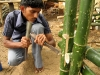 bamboo-research-centre_07_resize