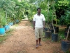botanical-garden_06_resize