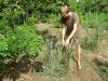 discipline-farm_08_resize